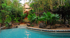 Yacutinga Hotel Iguazu Jungle