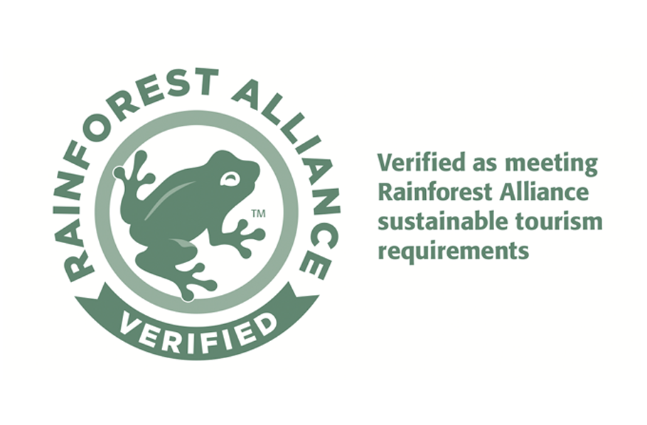 logo rainforest baja