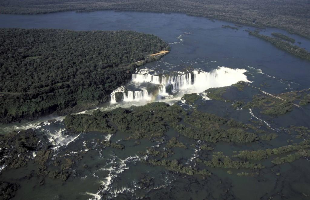 cataratas-del-iguazu-avistaje-de-aves-birding