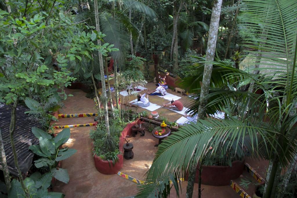 Yoga y meditación en la Selva del Iguazú