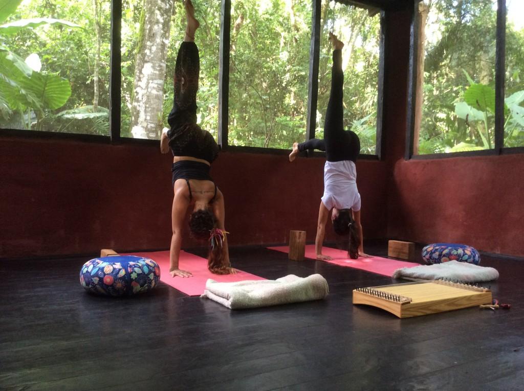 Práctica de Yoga entre colibríes.
