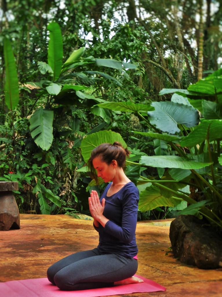 Meditación en la selva